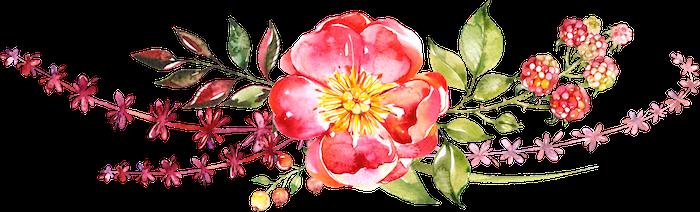 lil gma doula linda collet