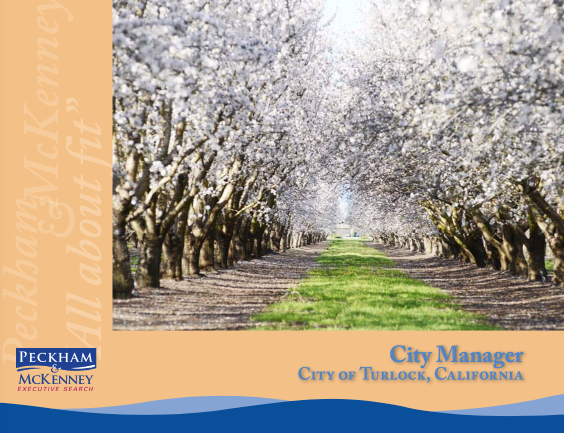 Peckham-McKenney-Executive-Search-Group-City-Manager-City-Turlock-California.png