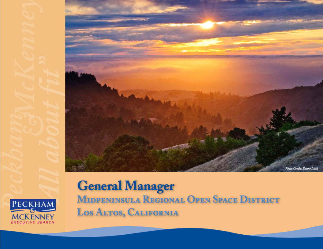 Peckham-McKenney-Executive-Search-General-Manager.png