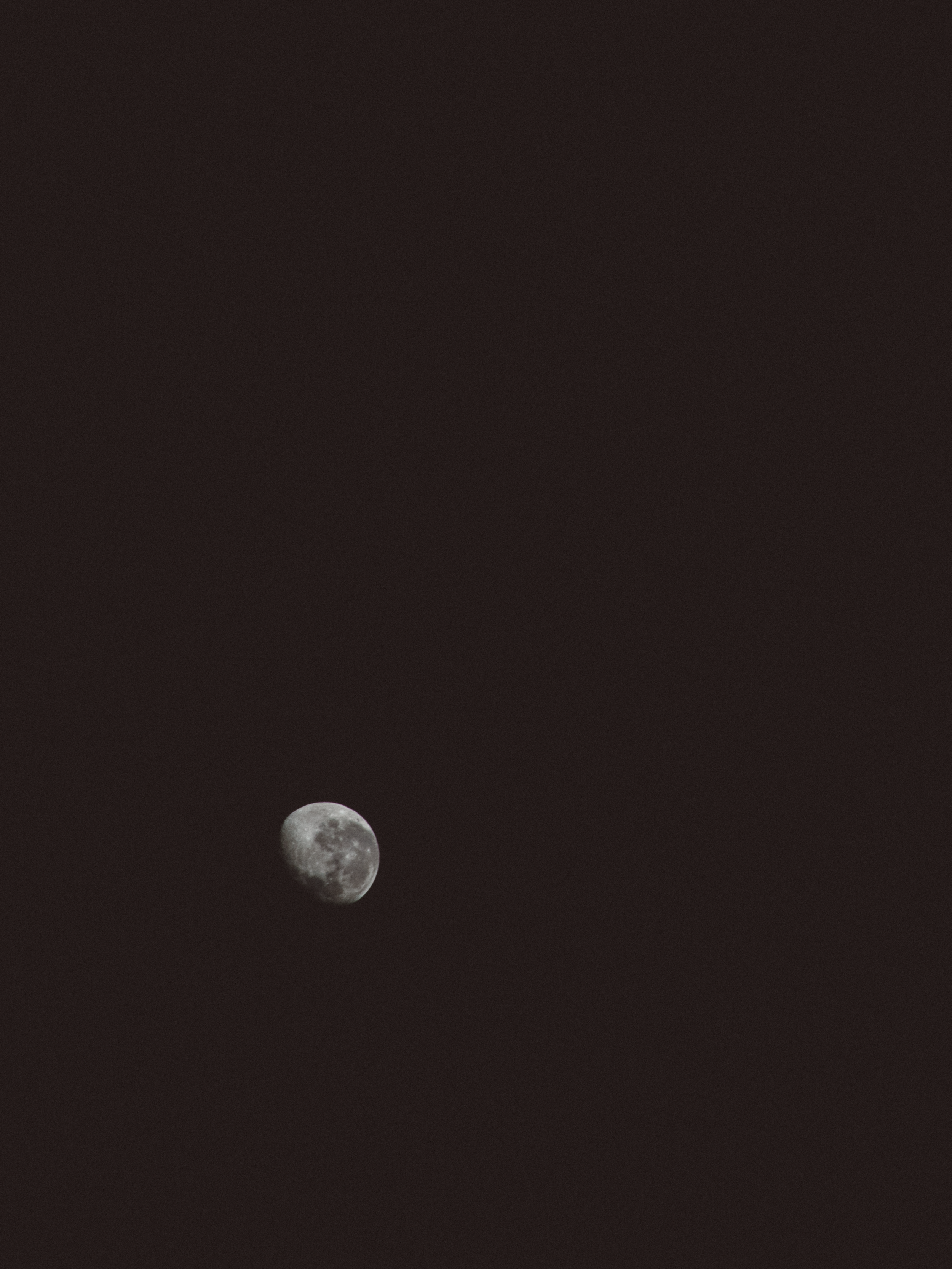 The magnificent moon