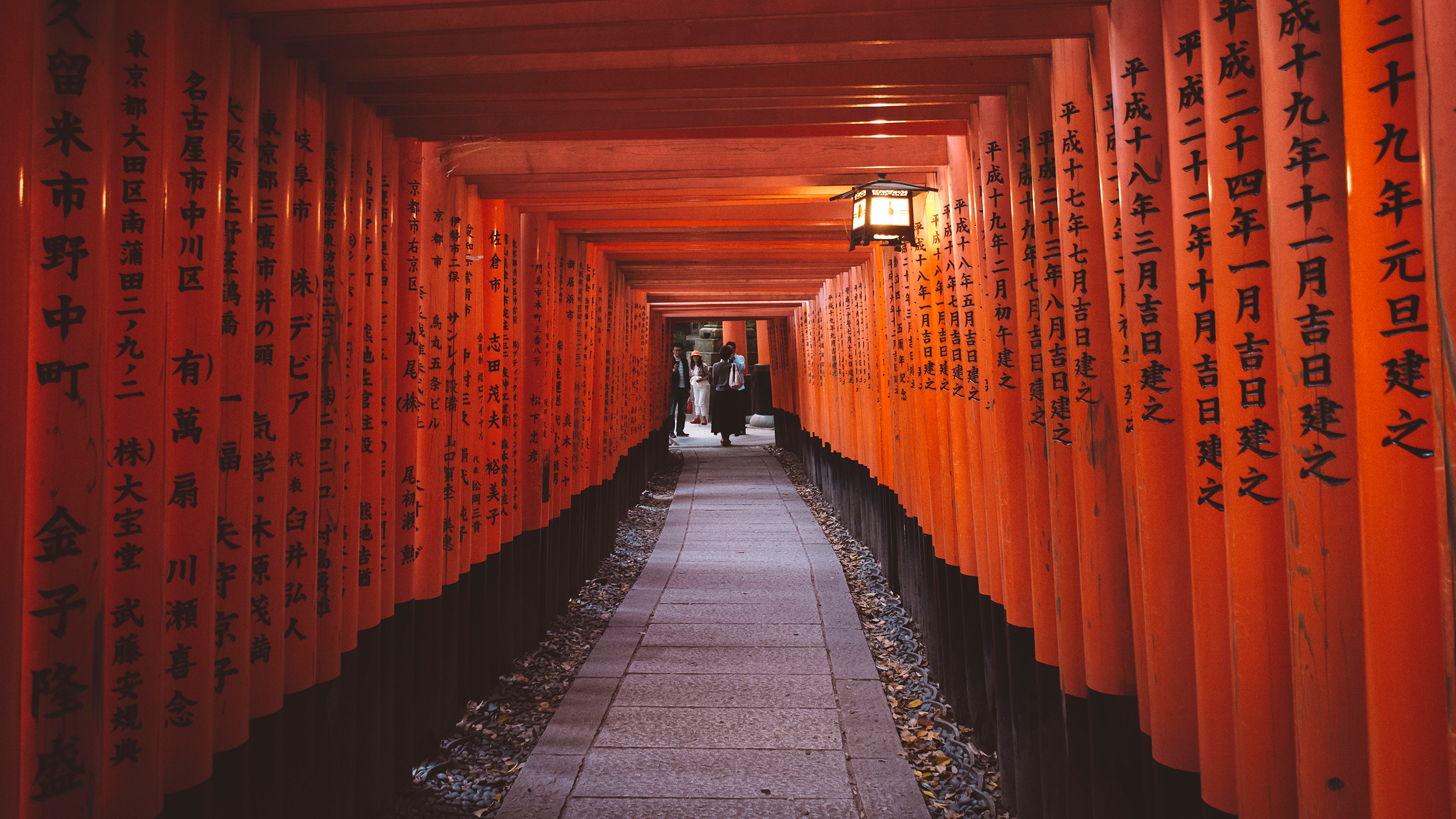 Fushimi Inari. Kyoto. View from behind and on the descent.