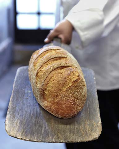 photos_napa_bread.jpg