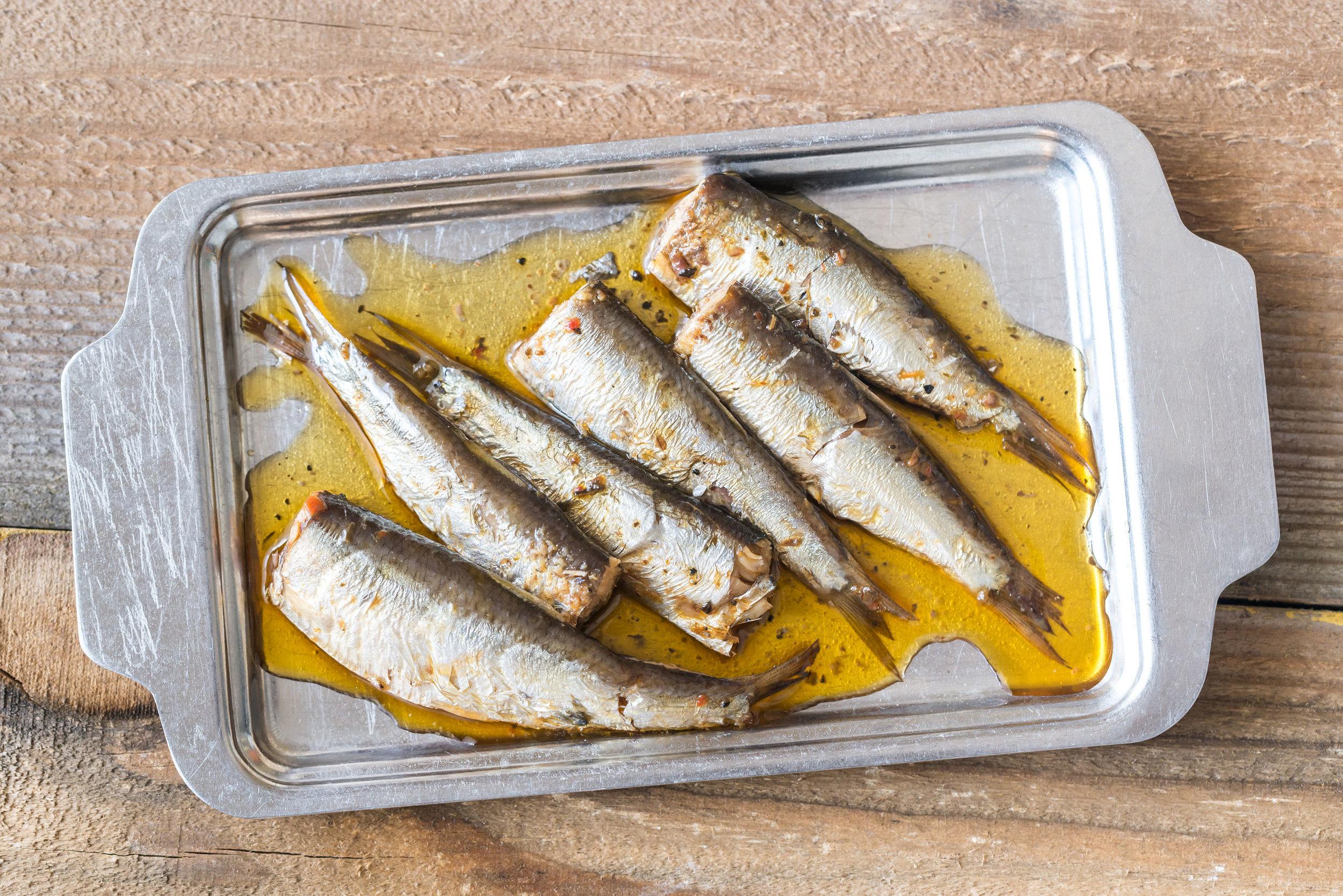sardinas.jpg