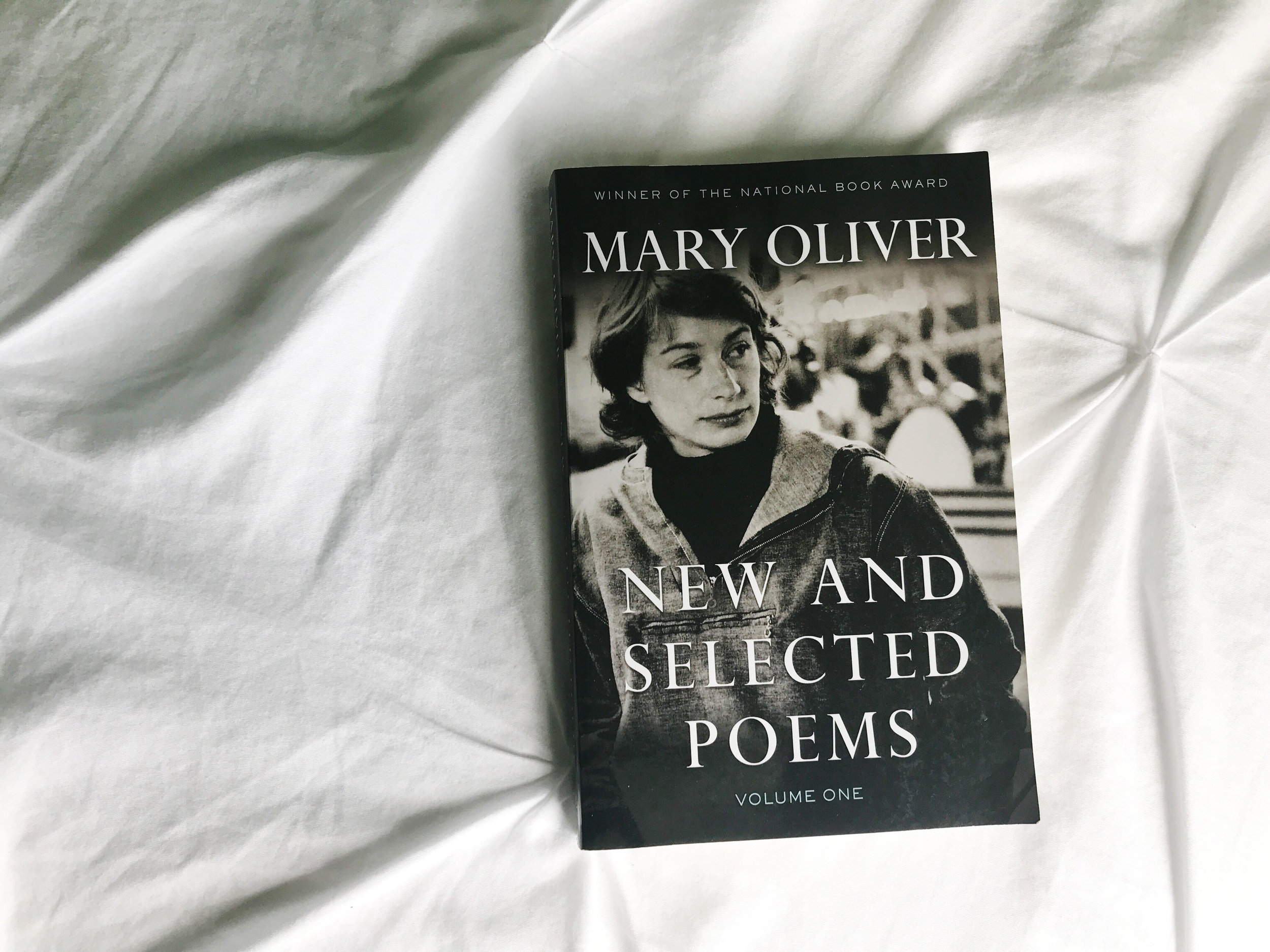 Mary Oliver poetry.jpg
