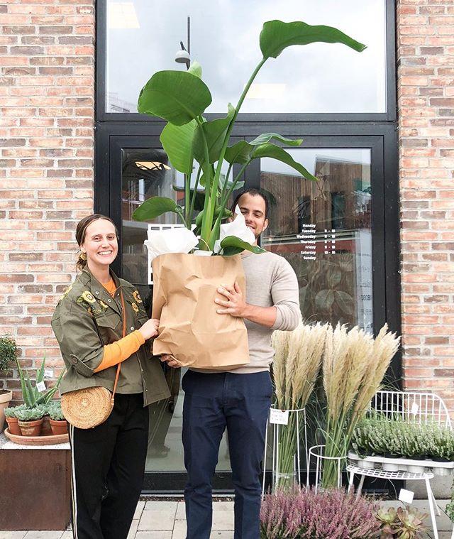 Weekender er lavet til stor plante-shopping 🌿 find denne store Strelitzia for 1250 kr både på Jægersborggade og i Nordhavn 🌴