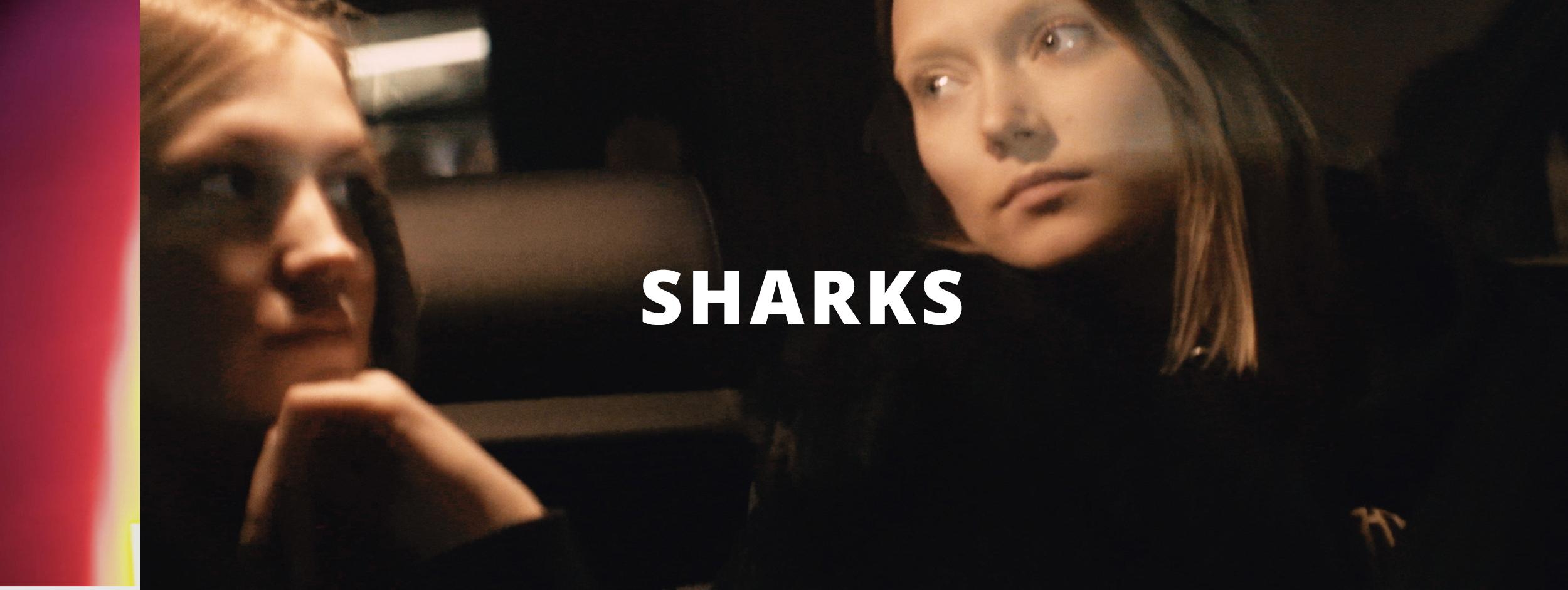 sharks+screen.jpg