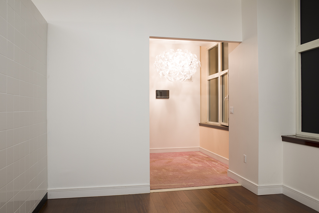 Daniel Klaas Beckwith  rosie path; magick carpet , 2015 carpet, Teflon Advanced Carpet Protector, spills, stains, cleaning product dimensions variable view 1
