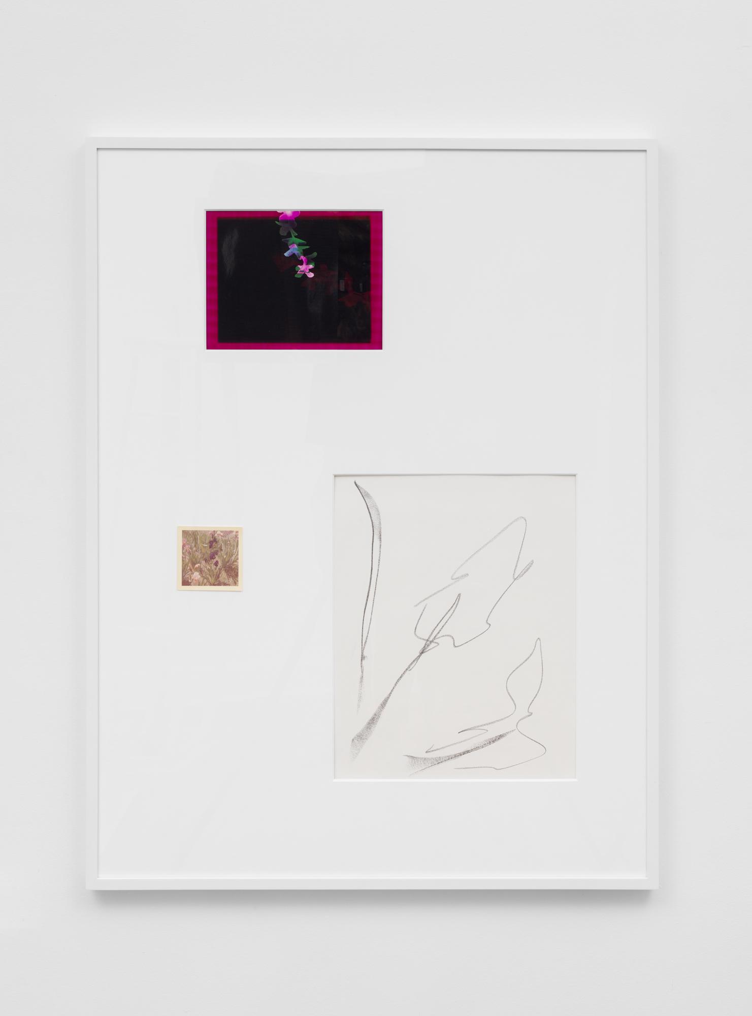 Connor McNicholas  Field Guide , 2017 Found polaroid, graphite on paper, photogram, wood frame, plexiglass, paint 40 x 30 inches (102 x 76 cm) CM5