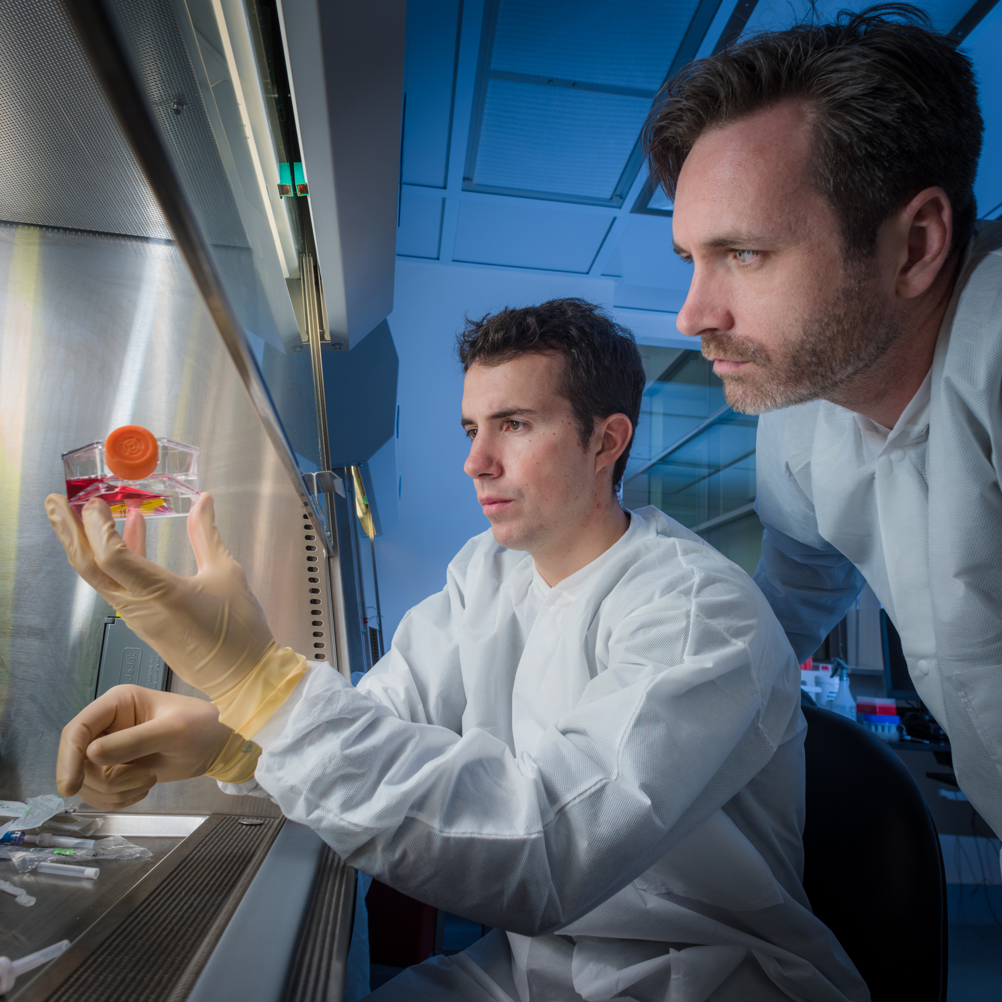 CAR T cell researchers at Dana-Farber Cancer Institute