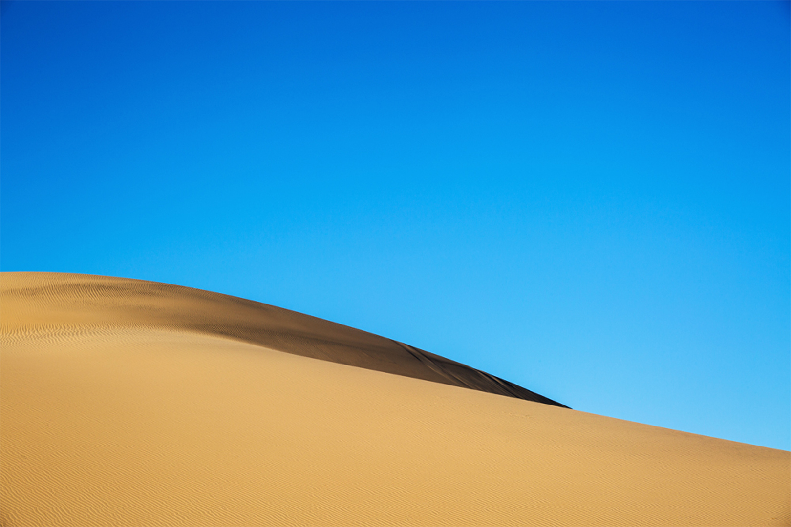 Dune Wave_IG.jpg
