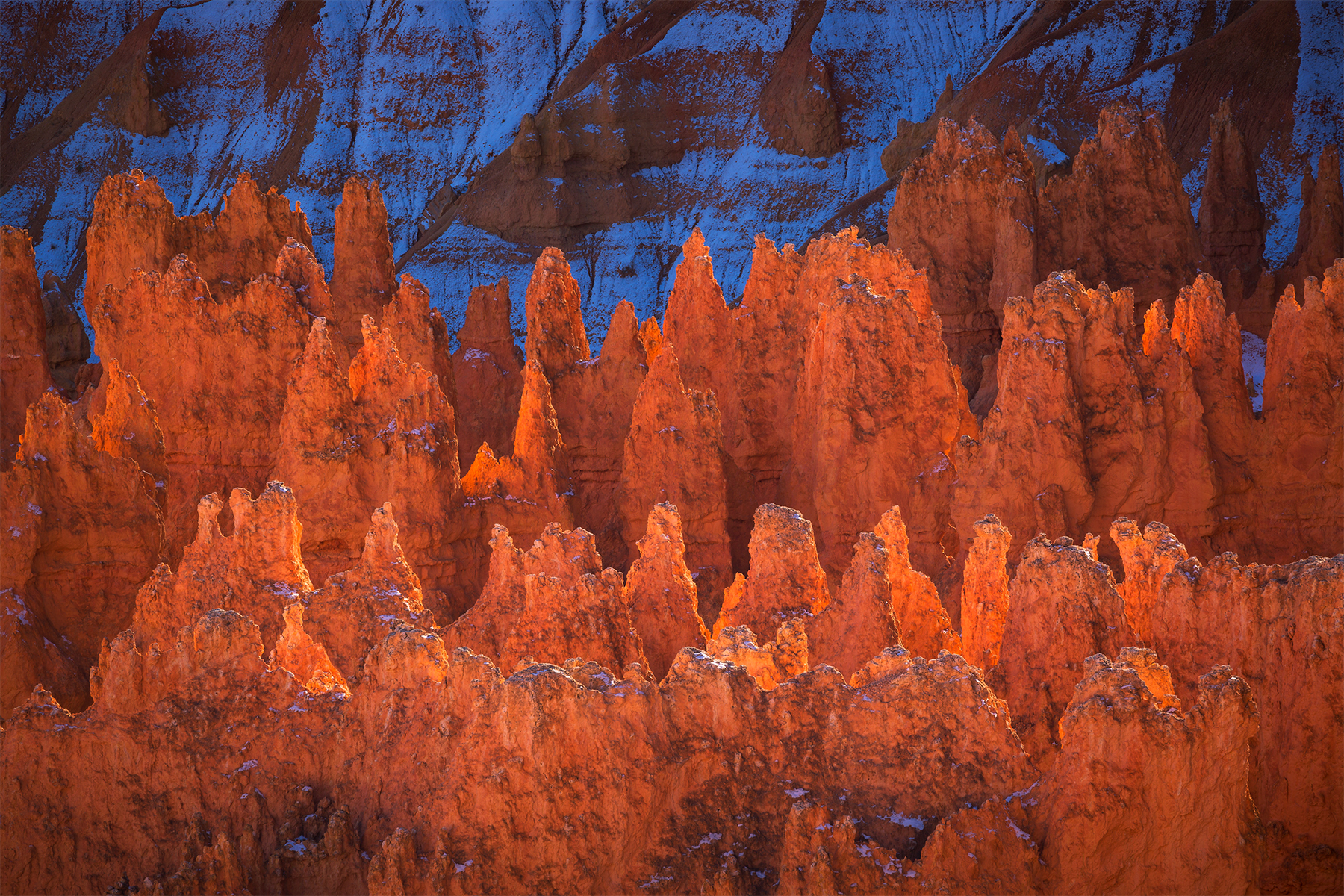 Canyon Glow_FB.jpg
