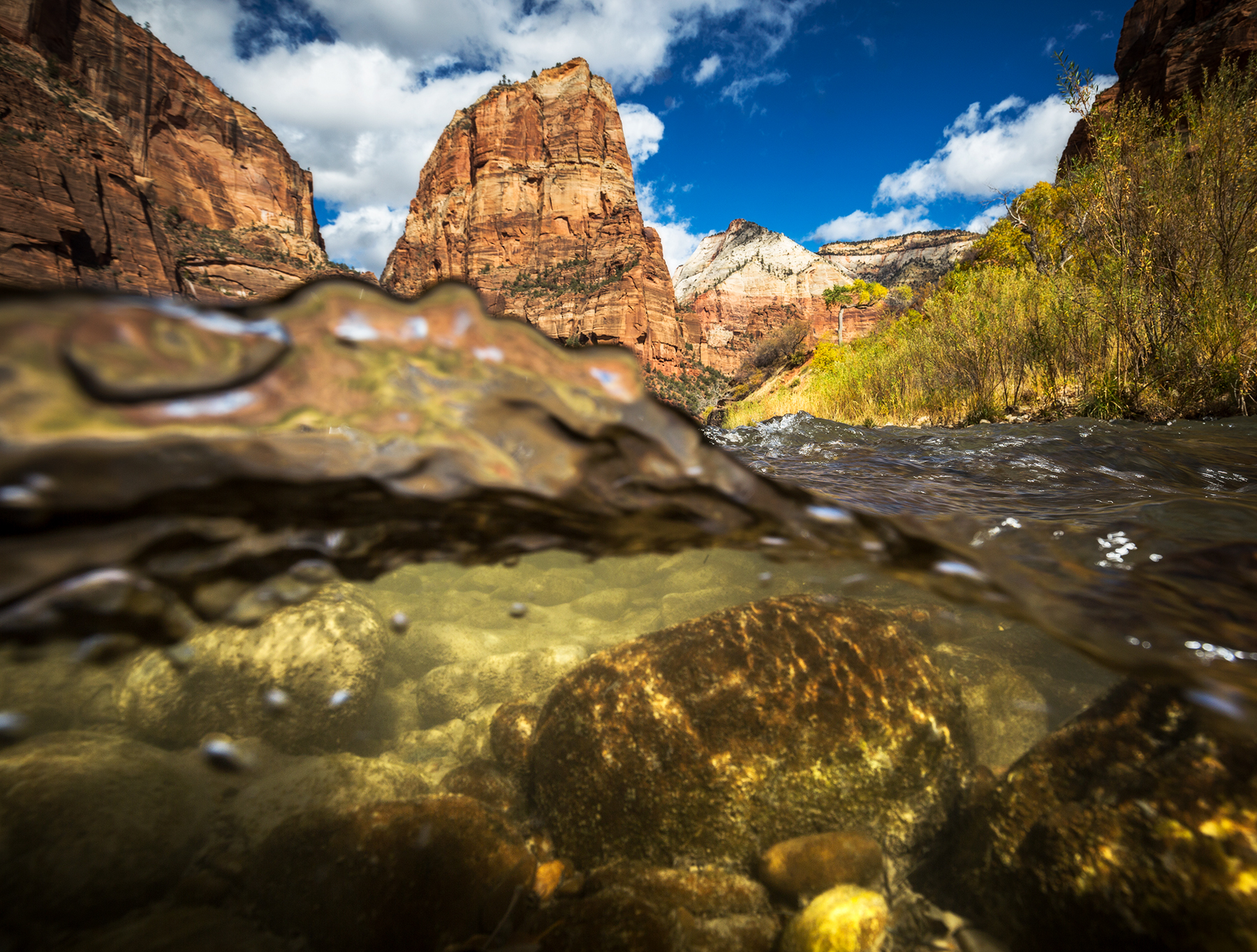 Zion Canyon Over-Under.jpg