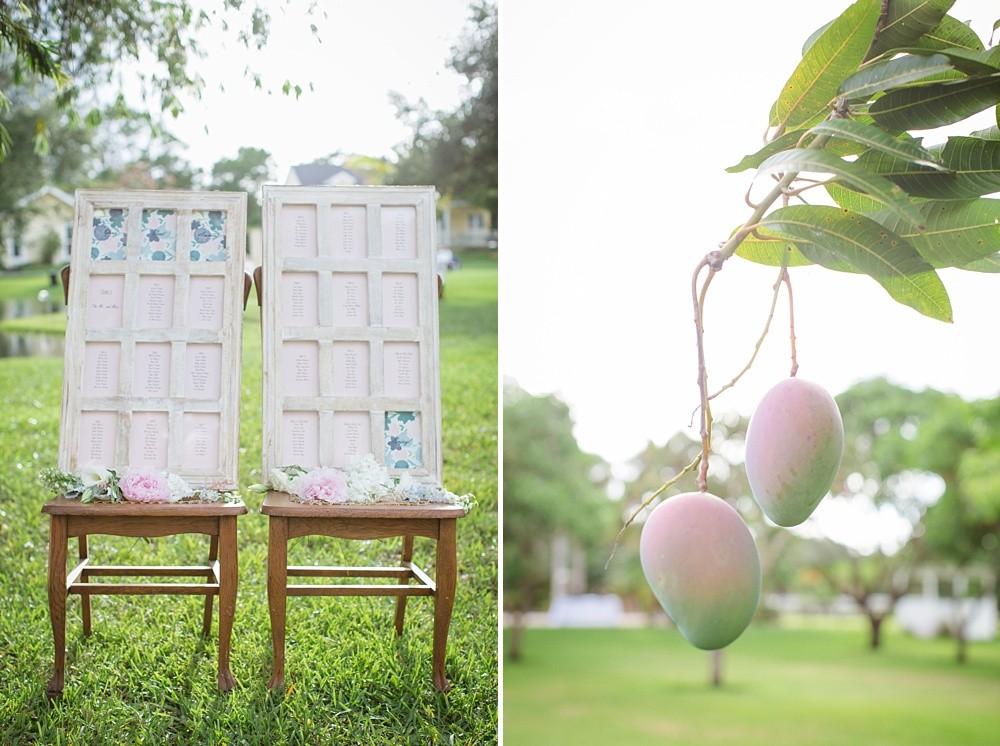 Algeria-Mango-Farm-Blush-Blue-Garden-Chic-Wedding_2954.jpg