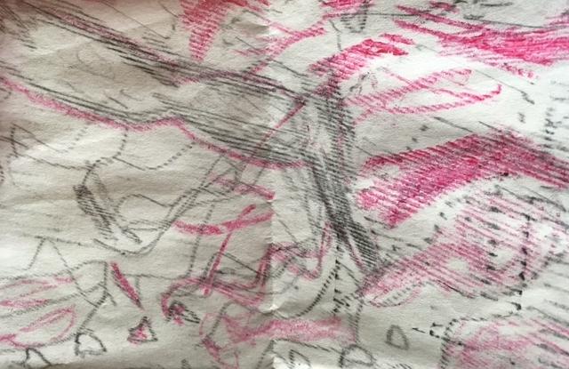 Drawing from Ancestral Dance workshop at Spillian    June, 2017