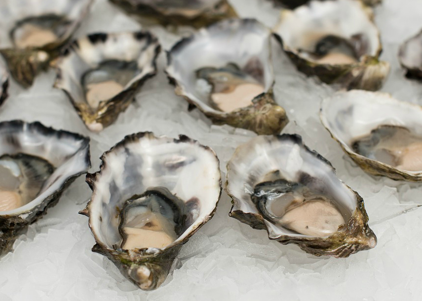 """Act 343 of 2015:Increases the lease rental rates and severances taxes on oysters.     The passage of this act is significant because it was an increased tax. Although it was industry supported with the proceeds dedicated back to the development of oyster seed grounds, the posture of the legislature was not to pass any new or extending taxes. This did take some work but was successful.   Act 570 of 2016:Allows for the cultivation of oysters on dually claimed water bottoms.    The bill was linked to the passage of HB 902 (Act 595) that establishes the process by which oyster farmers can file for permits which will lead to the lifting of the """"Oyster Lease Moratorium."""""""
