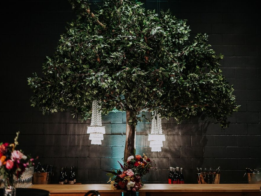 - ENCHANTED TREE