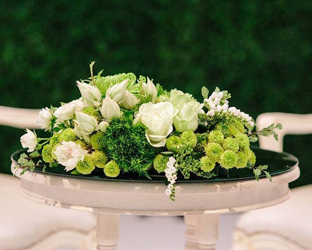 Beautiful blooms to seal the deal🍃 . . . Venue: @brisbanecityhall @theepicurefoodies Planner: @whitewhiteweddings 📸 Chris Hall Photography 🍃@alwaysfabulousflowers . . . . . #eventdesign #floralinstallation #weddingideas #eventdecor #brisbaneweddings #weddingceremony #weddingstylist #weddedwonderland #ruffledworthy #bridetobe #ido #ceremonydecor #weddingarbour #weddingflowers #floralinspiration #weddinginspiration #weddingtrends #luxurywedding #queenslandwedding #engaged #bridal #brisbaneweddingplanner #australianwedding #brisbanebride #weddingstyle #realwedding #eventhirebrisbane #weddingday #eventflowers #weddinginspo