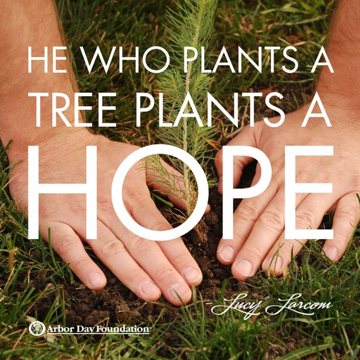 Arbor Day Foundation 1.png