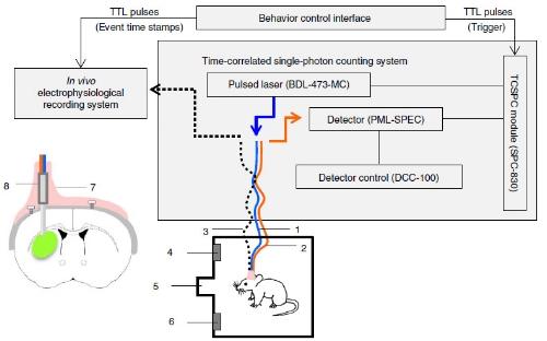 TPSC system.jpg