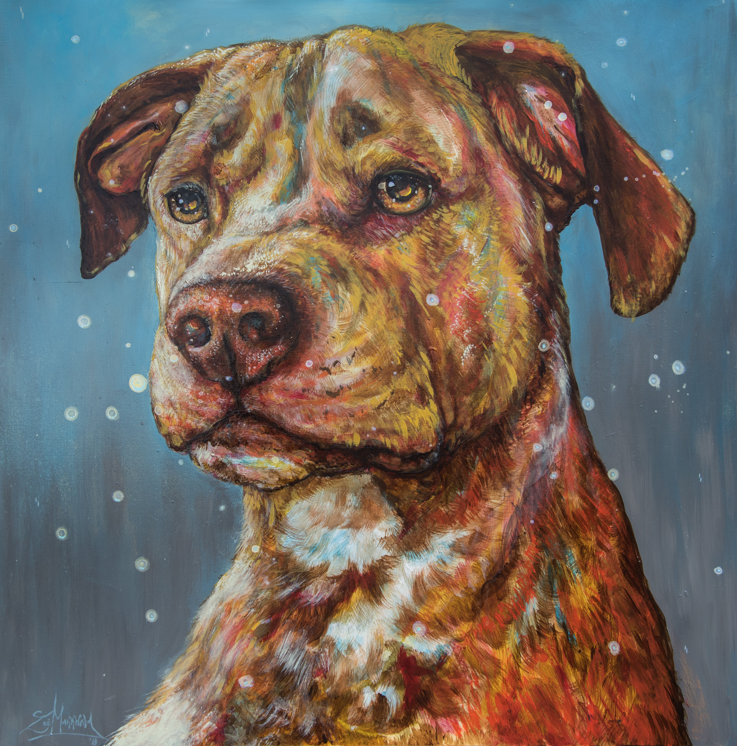 2018 Dog Portrait