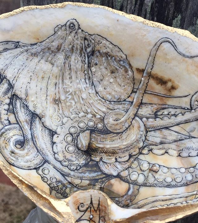 Detail of Octopus shell