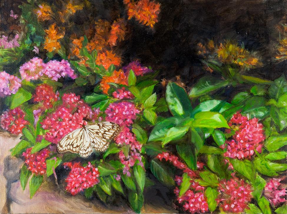 Butterfly Garden   Oil on linen  12 x 16 inch  Framed