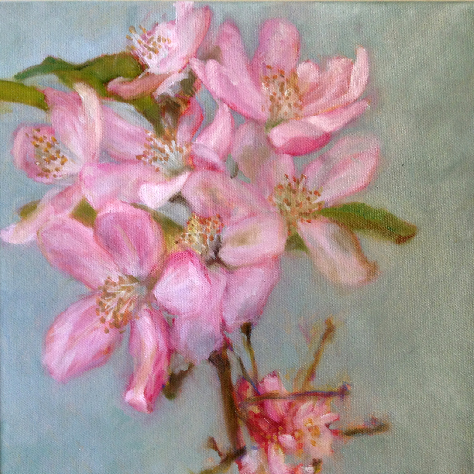 Blossoms   Oil on canvas  12 x 12 inch  Framed