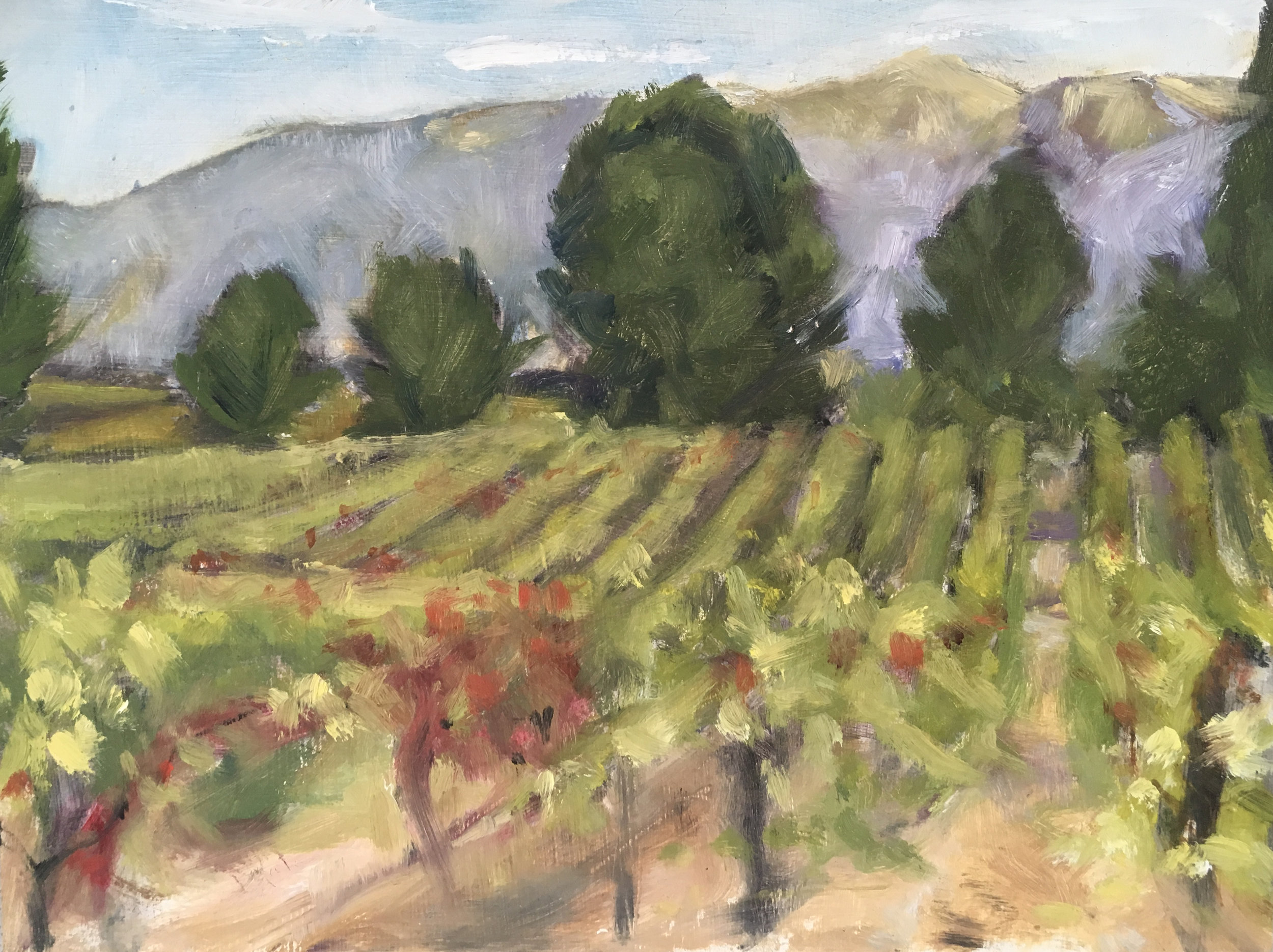 Vineyard in Provence  Oil on panel  6 x 8 inch  Available