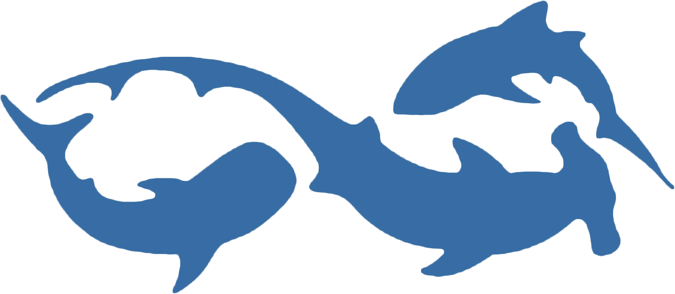 Sharks.org
