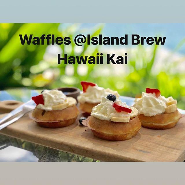 A favorite local café located in Hawaii Kai. Island Brew.  http://www.islandbrewcoffeehouse.com