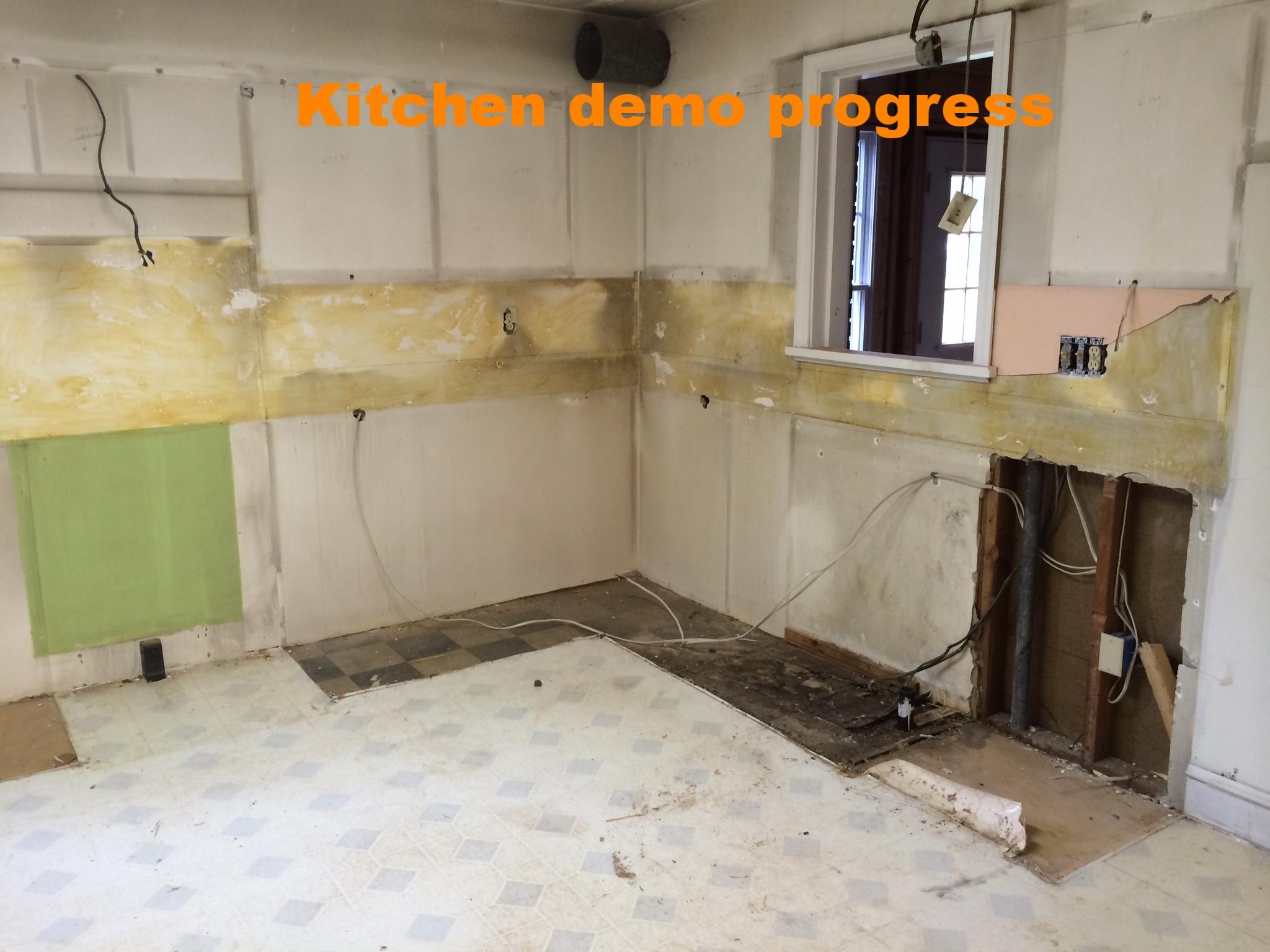 Kitchen demo progress_2.JPG