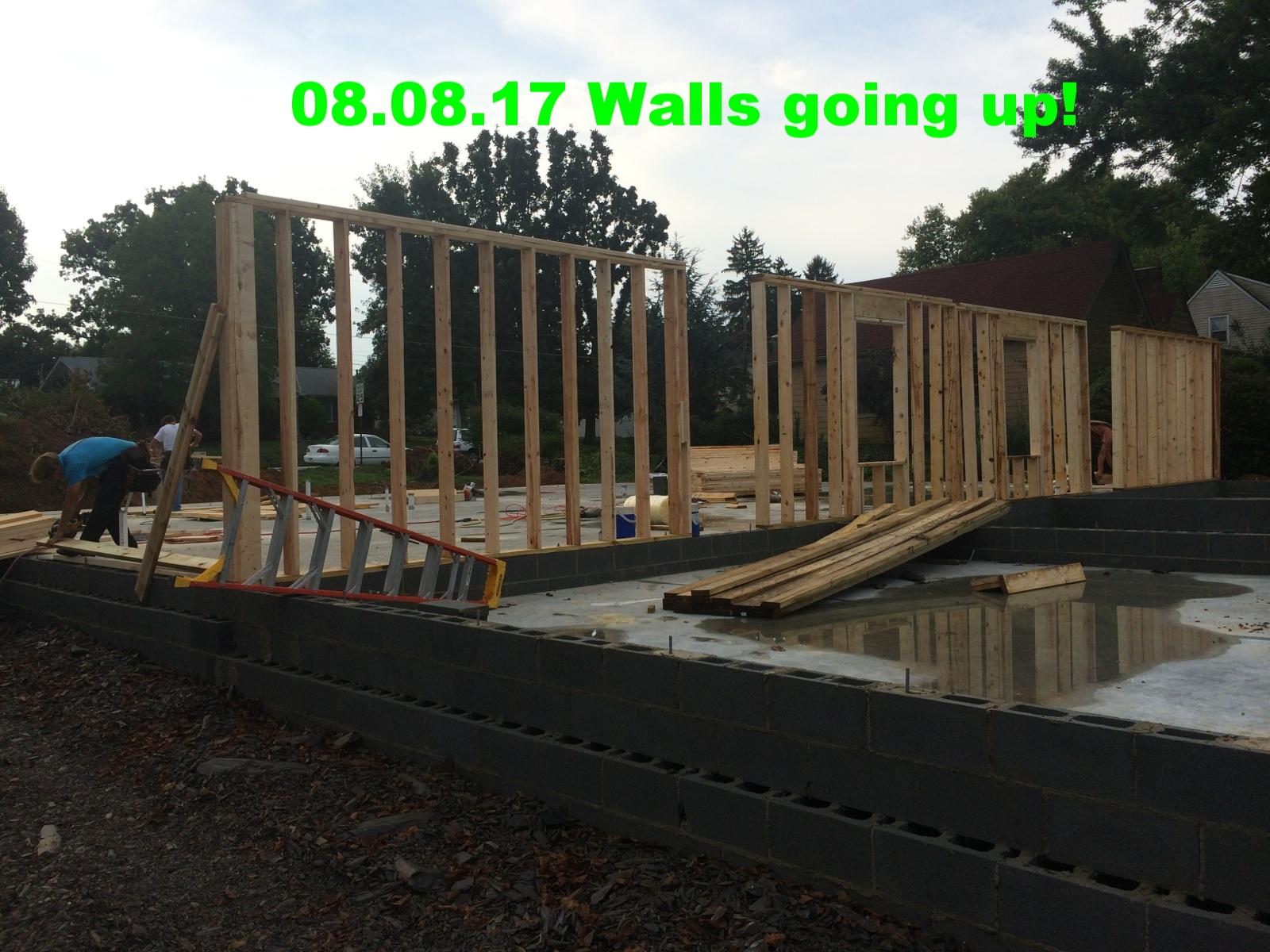 08.08.17_walls going up!.jpg
