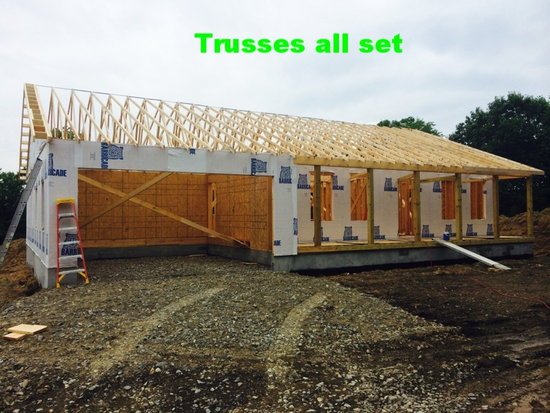 10-roof trusses in place.jpg
