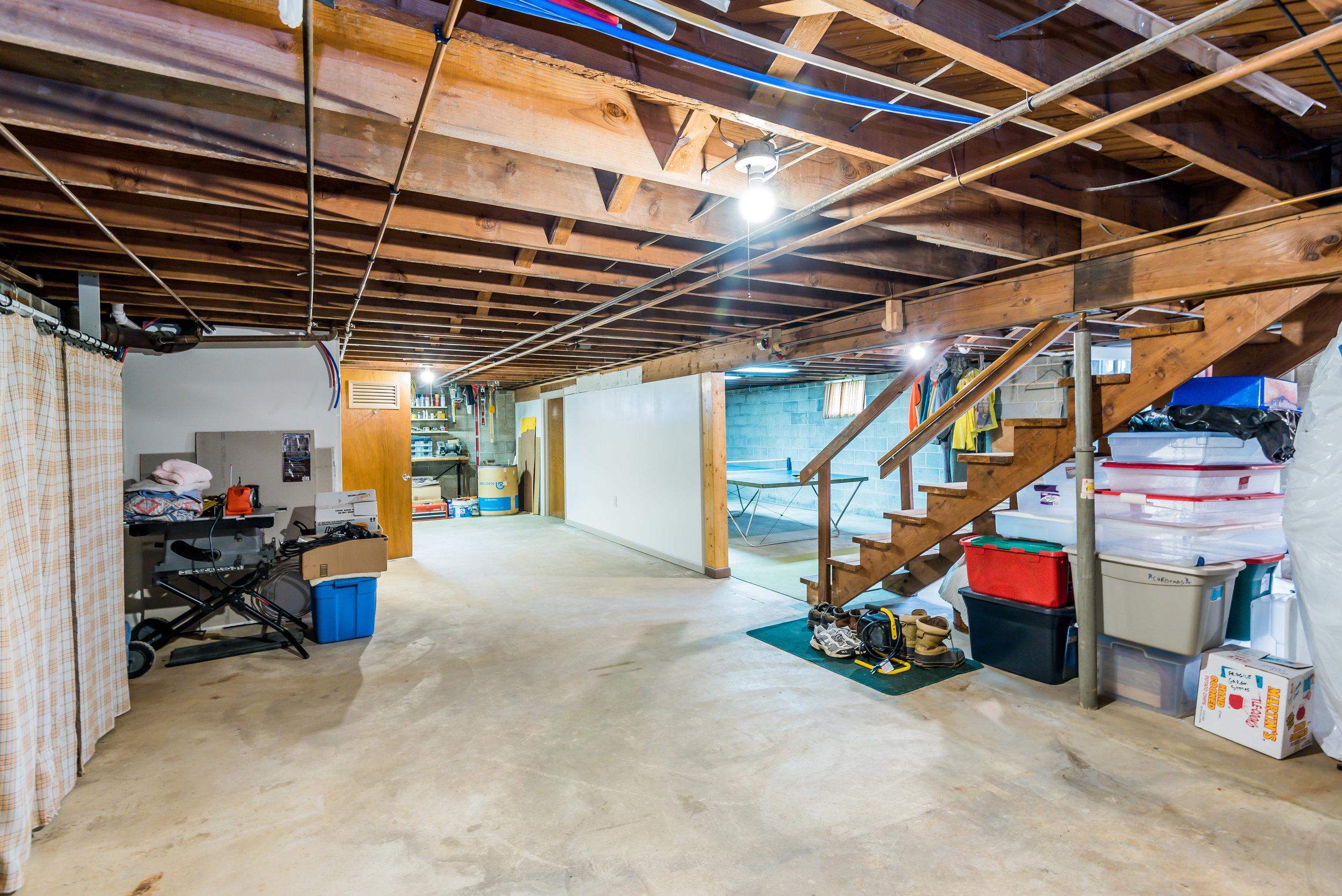 basement_1_of_1_-3.jpg