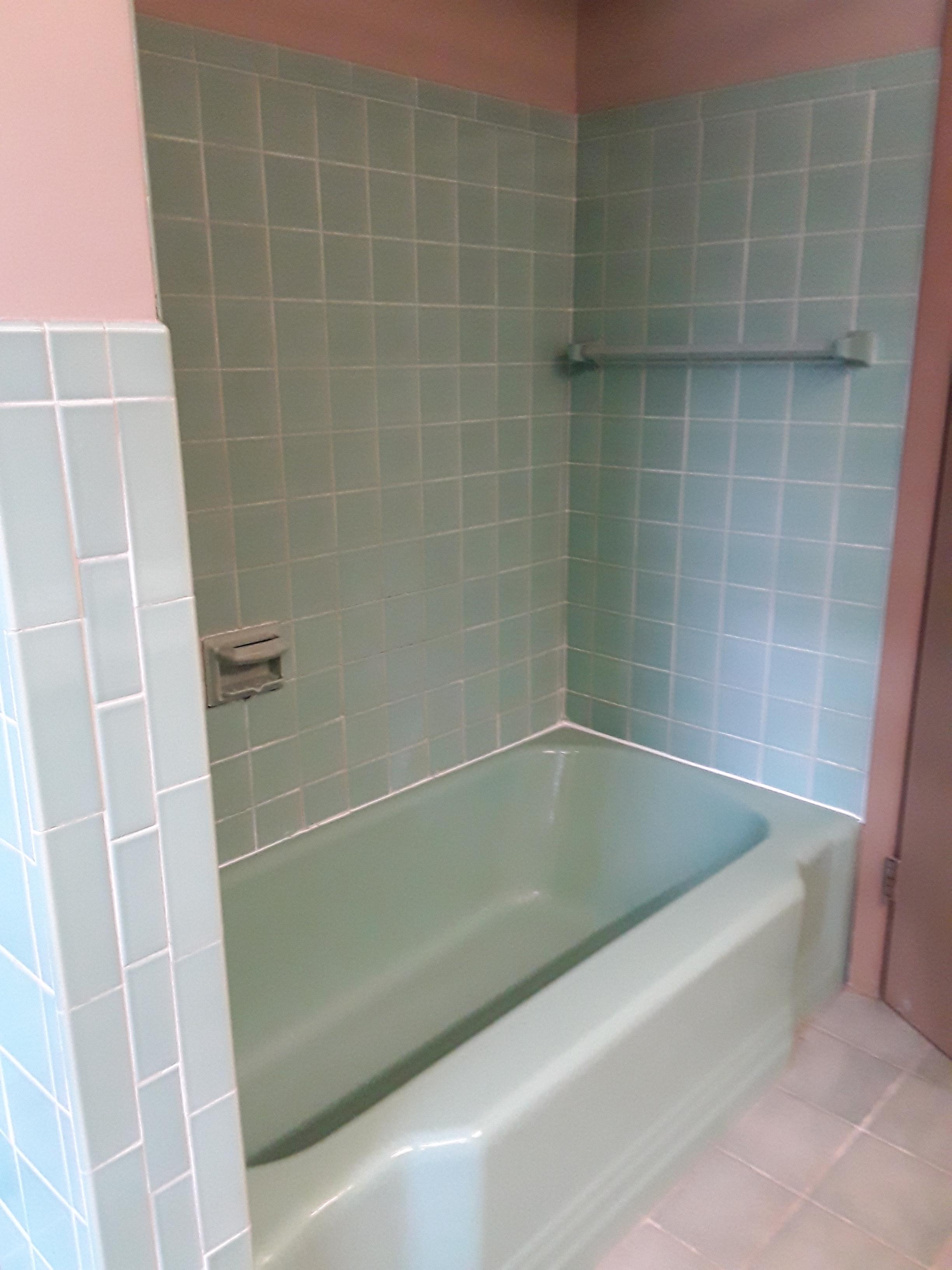 before_main bath tub.jpg