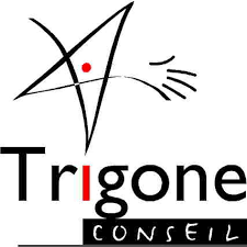 trigone.png