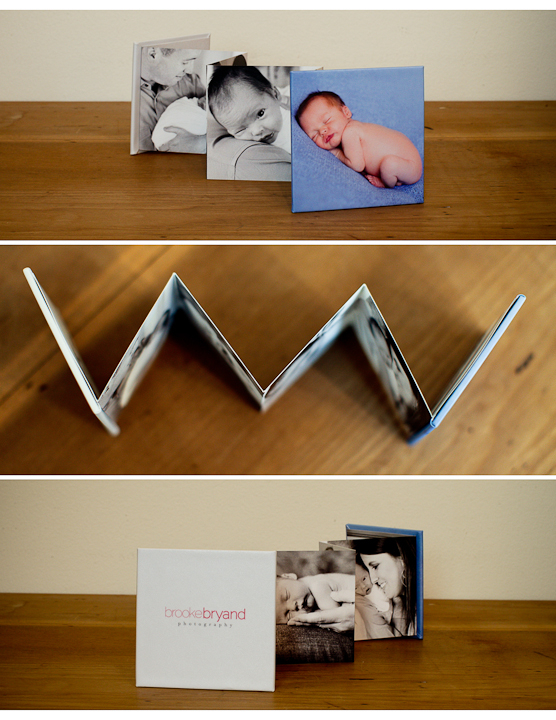 10.2011-Brooke-Bryand-Photography-Marketing-San-Francisco-Family-Photographer-acc.jpg