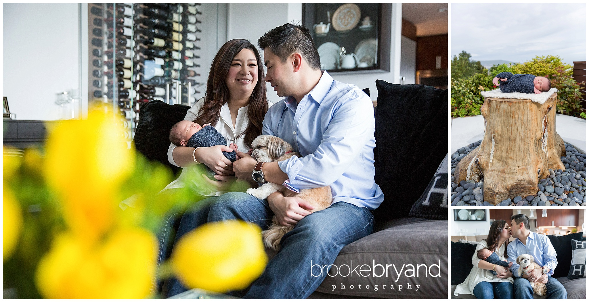 04.2016-Lum-Raleigh-Newborn-Photographer-Lifestyle-Newborn-Photographer-Brooke-Bryand-Photography-BBP_3196.jpg