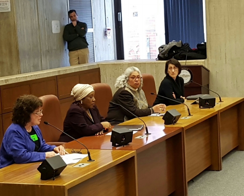 Boston Park Advocates Steering Committee Member Candice Donahue Gartley of All Dorchester Sports League testifies at Community Preservation Act hearing at Boston City Hall. (2016)