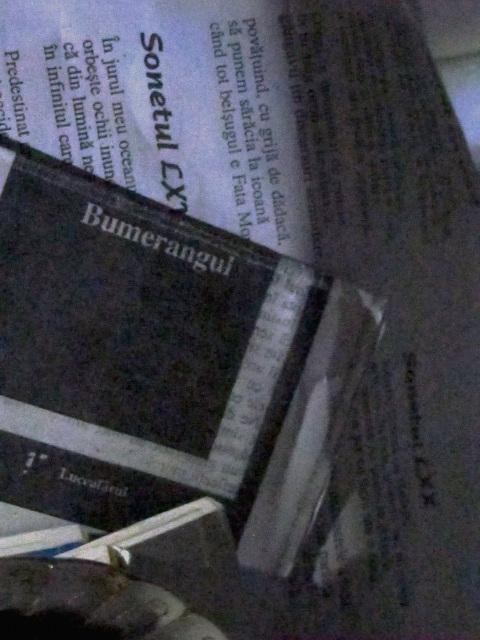 PageImage-505136-3056372-bumerangul.jpg