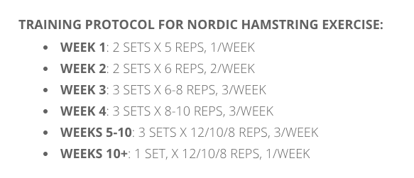 Nordic HS curl protocol.png