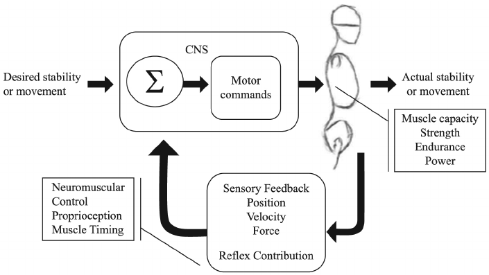NM system schematic Credit - Sheri Silfies.png