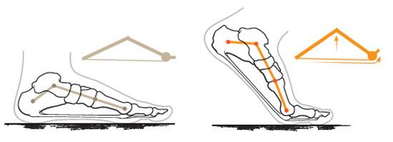 Windlass mechanism.jpg
