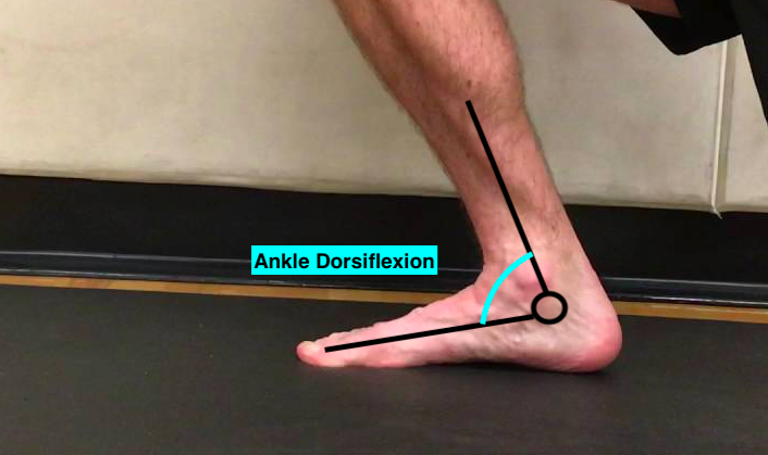 Ankle Dorsiflexion.png