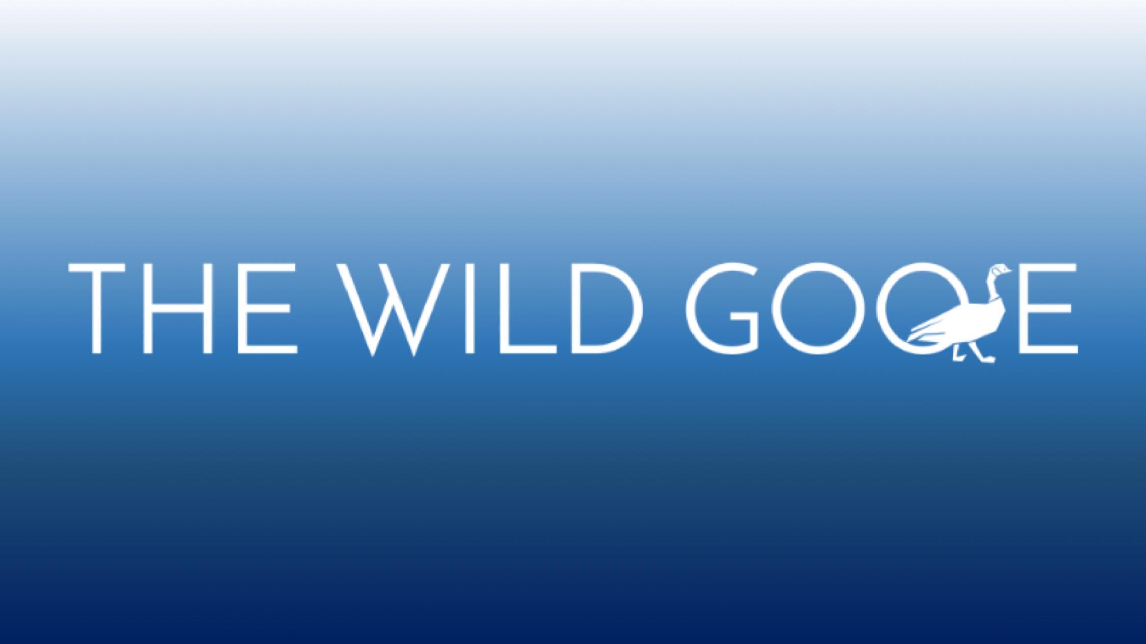 Wild goose.jpg