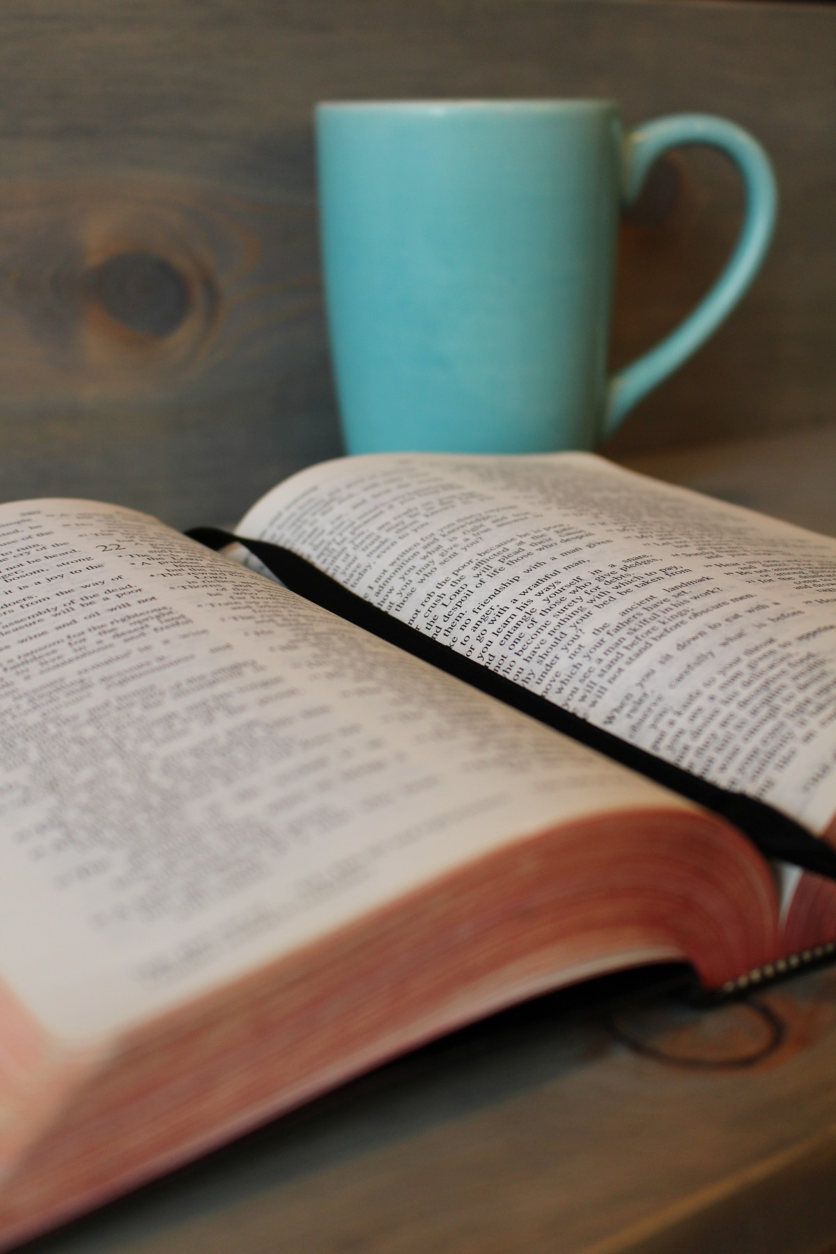 bible_study_coffee_cup_religion_christianity_christian_reading-863751.jpg