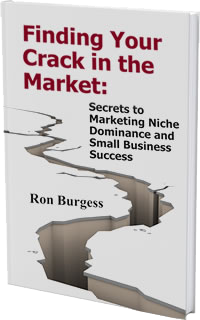 Finding Your Crack in the Market: Secrets to Marketing Niche Domination and Small Business Success.