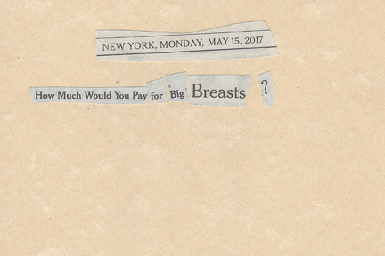 May 15, 2017 How Much Would You Pay for Big BreastsSMFL.jpg