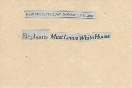 November 21, 2017, Elephants Must Leave White House SMFL.jpg