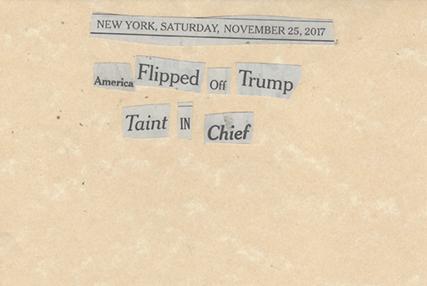 November 25, 2017 America Flipped Off Trump Taint in Chief SMFL.jpg